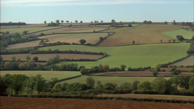 vídeos de stock e filmes b-roll de ws, rural landscape, norton, oxfordshire, united kingdom - chipping norton england