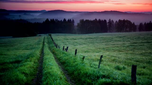CRANE DOWN: Rural Landscape