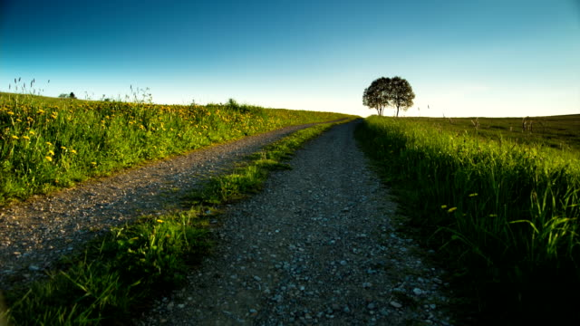 kranich bis: ländliche landschaft - footpath stock-videos und b-roll-filmmaterial