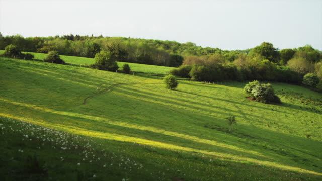 stockvideo's en b-roll-footage met ws rural landscape / wiltshire, uk - wiltshire