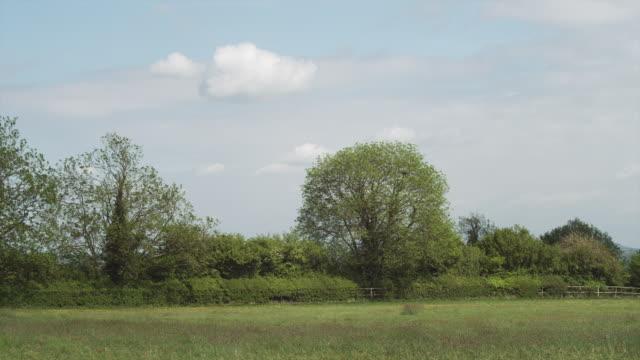 stockvideo's en b-roll-footage met ws pan rural landscape / wiltshire, uk - wiltshire
