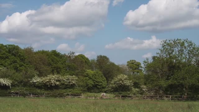 WS PAN Rural landscape / Wiltshire, UK