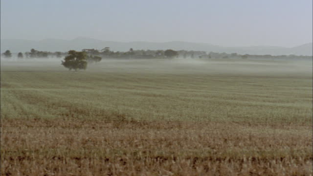 ws pan rural landscape with fog, new south wales, australia - stubble stock videos & royalty-free footage