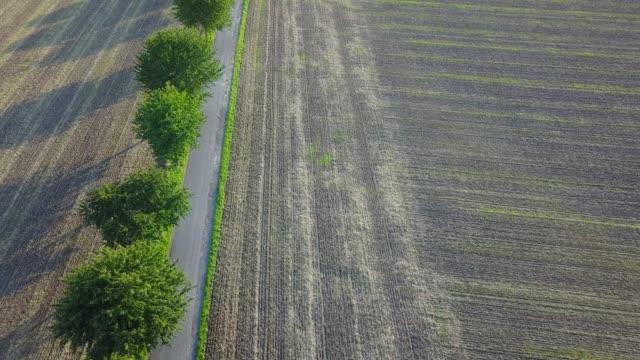 Rural road in Germany