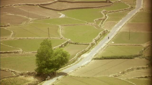 vídeos y material grabado en eventos de stock de ws, ha, rural road surrounded with green fields, ladakh, jammu and kashmir, india - paisaje mosaico