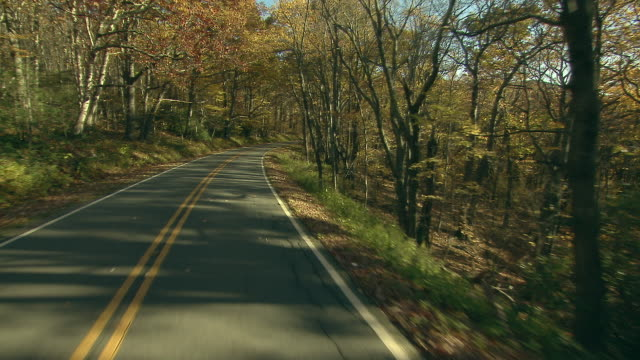 vidéos et rushes de rural road through woods in fall - route de campagne