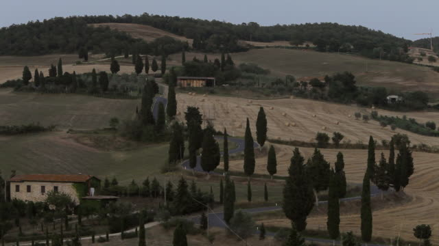 ws ha rural road with cypress trees / tuscany, italy - 1970 stock videos & royalty-free footage