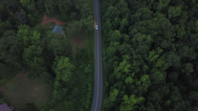 rural roadway through forest, overhead aerial - georgia country stock videos and b-roll footage