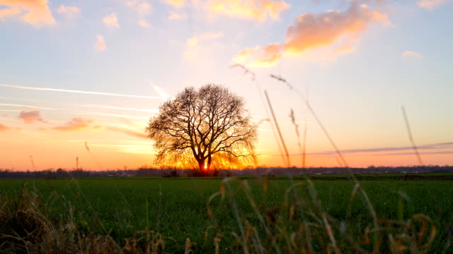 stockvideo's en b-roll-footage met hd motion time-lapse: rural scene at sunset - schemering