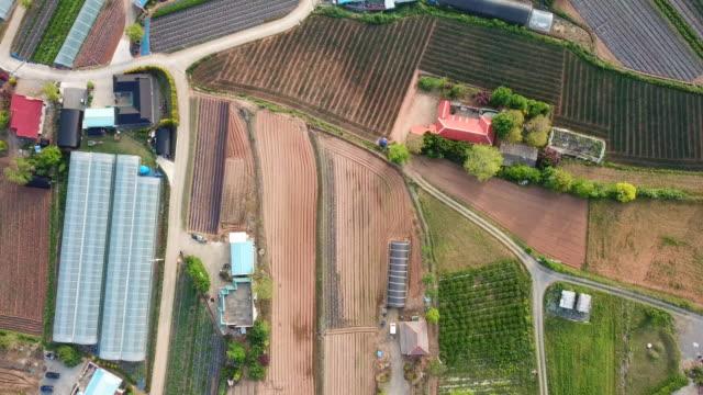 rural scenery of cultivated lands in spring / taean-gun, chungcheongnam-do, south korea - 農家の家点の映像素材/bロール