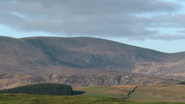 明るい晴れた日に田園スコットランド風景 - johnfscott点の映像素材/bロール