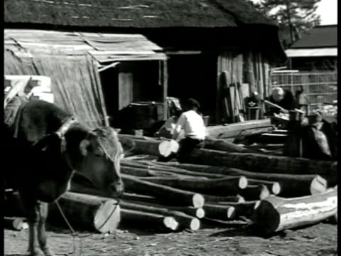 rural village w/ thatched houses japanese peasant chopping lumber young male sawing lumber vs villagers working making lacquered tray silkscreening... - strohdach stock-videos und b-roll-filmmaterial