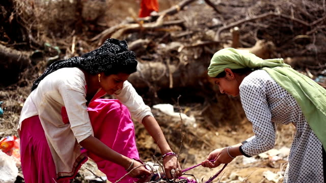rural women cutting woods - rural scene stock videos & royalty-free footage