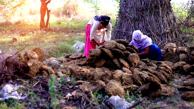 vídeos de stock, filmes e b-roll de mulheres rurais trabalhando ao ar livre - pobreza questão social