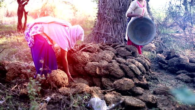 vídeos de stock e filmes b-roll de rural women working outdoor - pobreza questão social