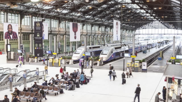 stockvideo's en b-roll-footage met rush hour at gare de lyon in paris. - perron