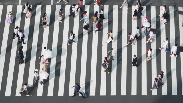 rush hour at shibuya crossing - zebra crossing stock videos & royalty-free footage