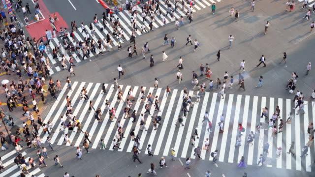 vídeos y material grabado en eventos de stock de rush hour in tokyo city, people crossing the street - cruce de shibuya