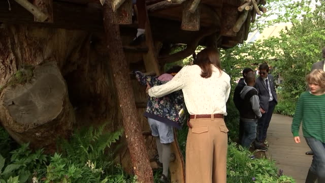 rushes of catherine duchess of cambridge climbing down from tree house and chatting to children at her 'back to nature' woodland garden design which... - chelsea flower show stock videos & royalty-free footage