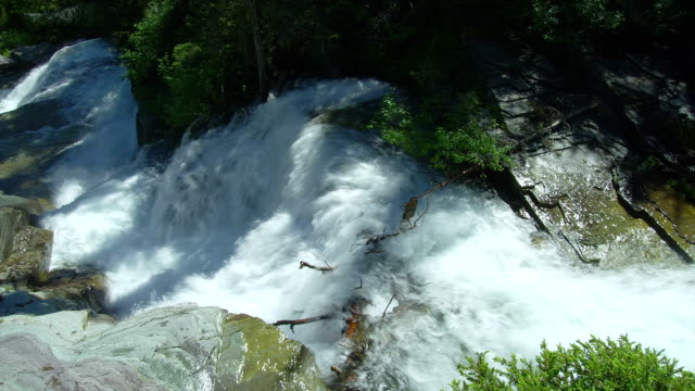 A rushing river cascades downhill in Glacier National Park.