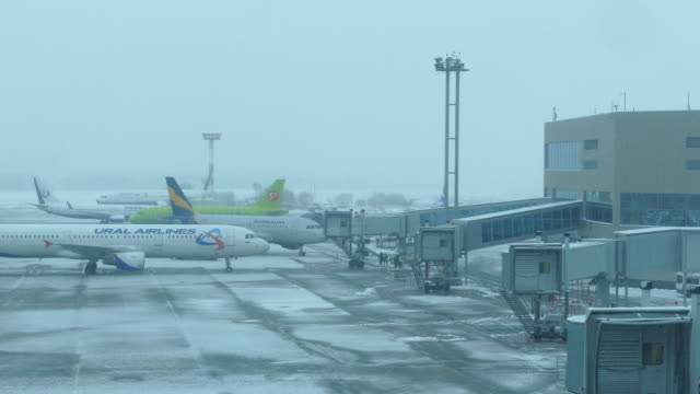 Russia. Moscow - Domodedovo airport at snow