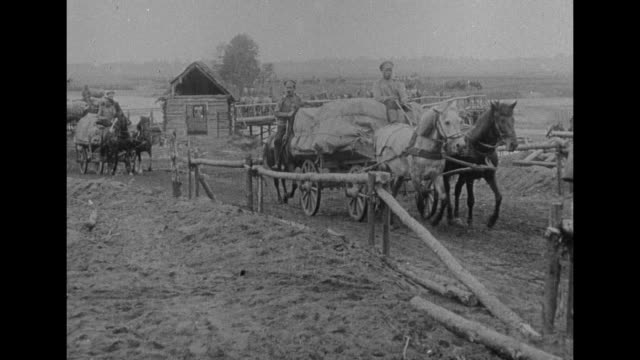 stockvideo's en b-roll-footage met russian soldiers driving supply wagons pulled by horses along road / horses wading in river / title card soldiers stop to feed the hungry peasants... - paardenkar