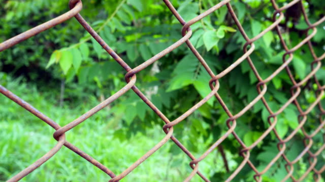rust wire fence with green forest - imperfection stock videos & royalty-free footage