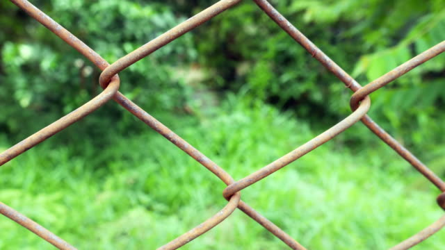 rust wire fence with green forest - weathered stock videos and b-roll footage