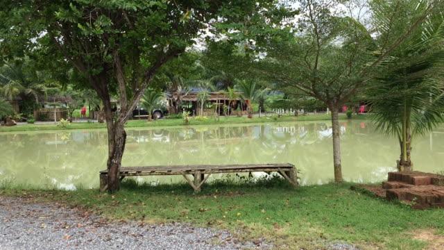 湖の近くの素朴な木製竹製ベンチ - 地形点の映像素材/bロール