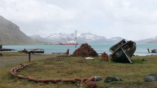 vidéos et rushes de rusty ship wreck and chains at abandoned whaling station - groupe moyen d'animaux