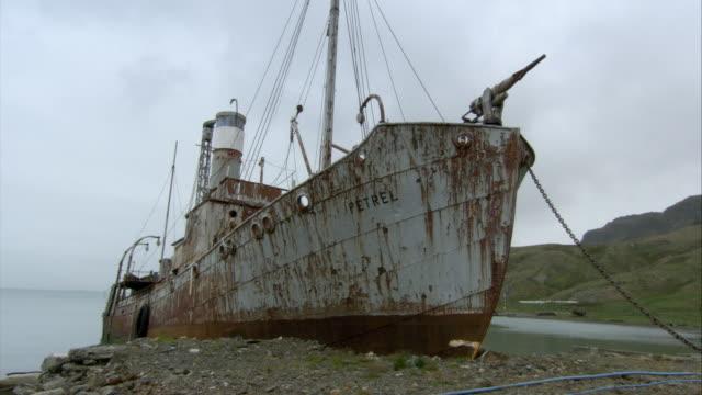 ms, rusty shipwreck on beach, grytviken, south georgia island - sydgeorgien bildbanksvideor och videomaterial från bakom kulisserna