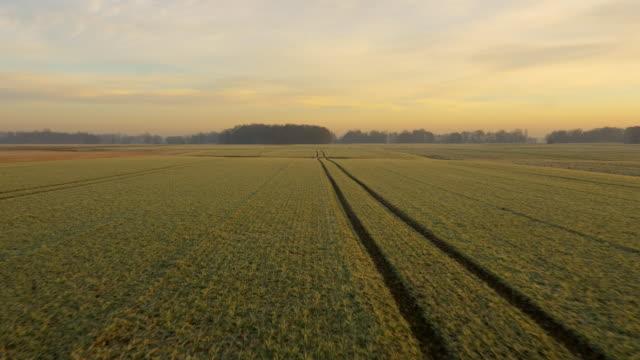 AERIAL Ruts in the field