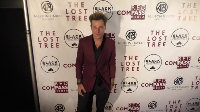 ryan cabrera at the 'the lost tree' screening at tcl chinese 6 theatres on october 09 2017 in hollywood california - the lost tree stock videos and b-roll footage
