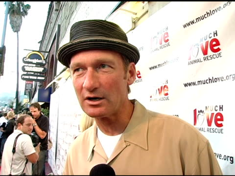 vídeos de stock, filmes e b-roll de ryan stiles on the natural fit for shelter dogs and comedians on why he's a fan of much love on people vs pets at the 4th annual much love animal... - ryan stiles
