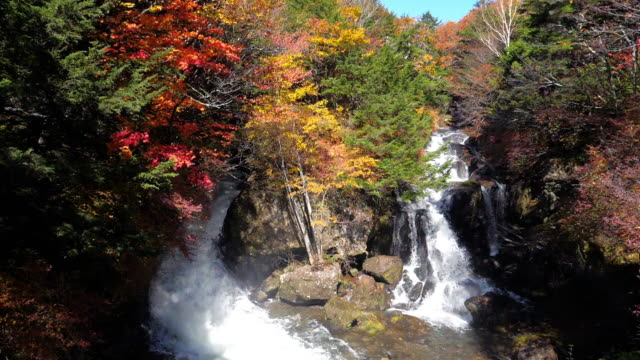 ryuzu falls waterfall in changed forest in autumn time at nikko japan , slow motion - kanto region stock videos & royalty-free footage