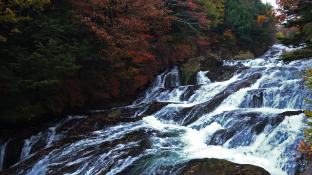 ryuzu waterfall is flanked by many trees which turn yellow and red during the autumn leaf season, nikko,japan. - aomori prefecture stock videos & royalty-free footage