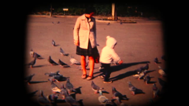 stockvideo's en b-roll-footage met 60 's 8 mm footage - voederen van vogels in een park - retro style