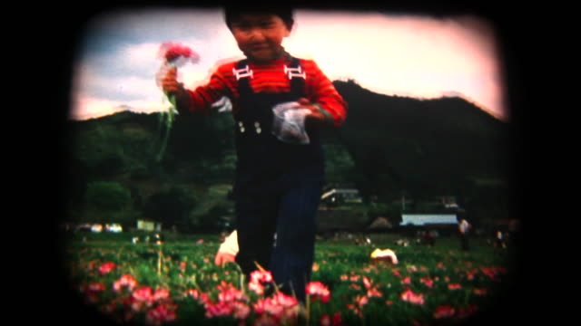 stockvideo's en b-roll-footage met 60 's 8 mm footage - bloemen plukken - retro style