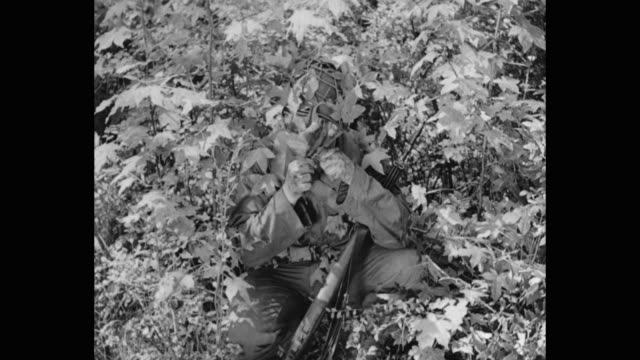 1940's - army soldier attaching leaves on helmet for camo and hiding in bush - d day stock videos & royalty-free footage