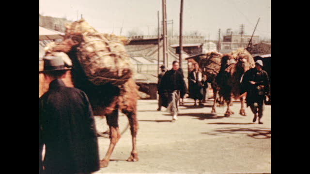 1930's beijing, caravan of camels - beijing stock videos & royalty-free footage