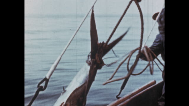 1950's - big game fishing off the chilean coast - roped off stock videos & royalty-free footage