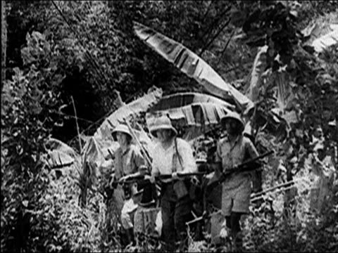 1940's hunting tigers in india - safari india stock videos and b-roll footage