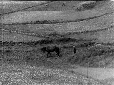 vidéos et rushes de 1930's ireland - irlande