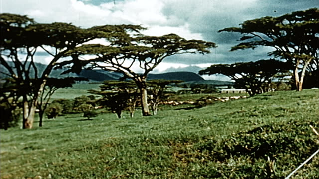 1960's kenya - thomson's falls and surrounding countryside - kenya stock videos & royalty-free footage