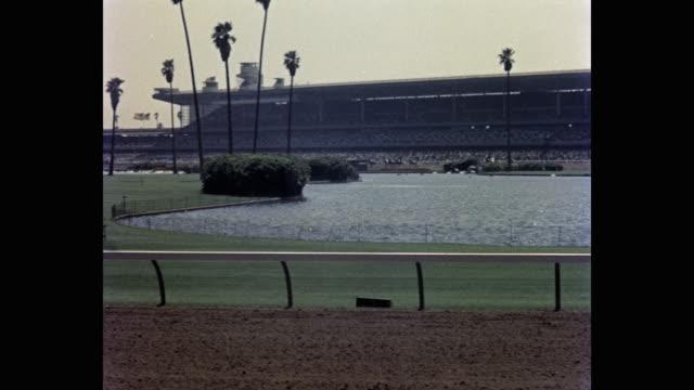 vídeos y material grabado en eventos de stock de 1950's - panning shot of horse racing at hollywood park racetrack, inglewood, california, usa - animales de trabajo