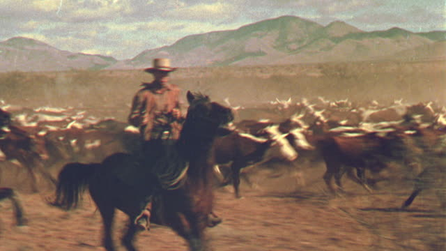 1800's reenactment tracking shot 2 cowboys on horses running with cattle on plain / billy the kid - カウボーイ点の映像素材/bロール