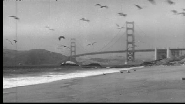 1940's san francisco - san francisco ferry building stock videos & royalty-free footage