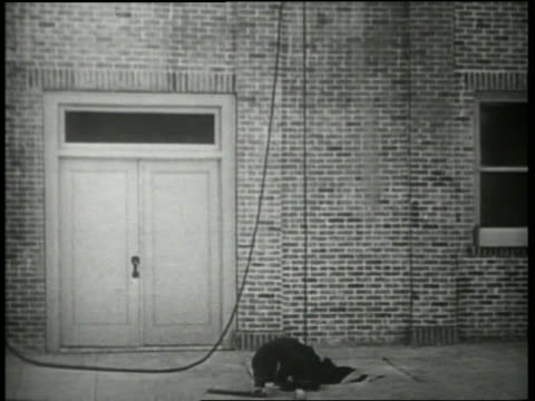 B/W 1920's shrunken policeman crawls from hole in ground / joined by other police, they run off