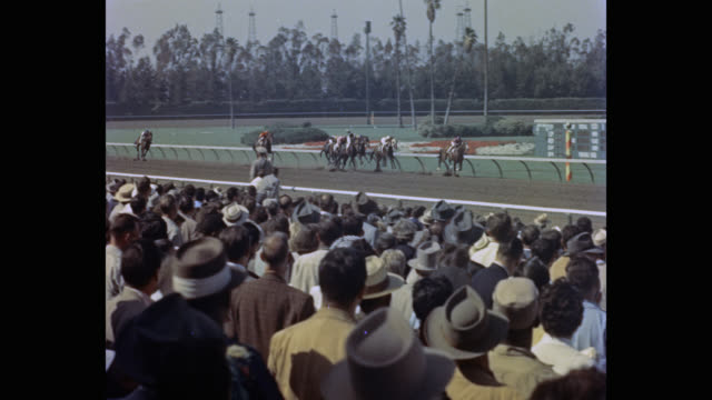 vidéos et rushes de 1950's - tracking shot of jockey falling from horse during horse racing at racecourse, hollywood park racetrack, inglewood, california, usa - accident domestique