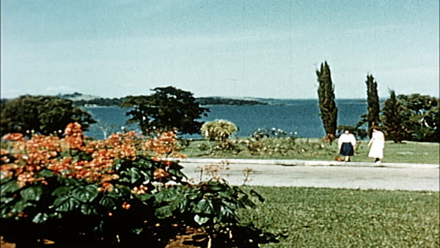 1960's uganda, lake victoria, entebbe - botanical garden stock videos & royalty-free footage